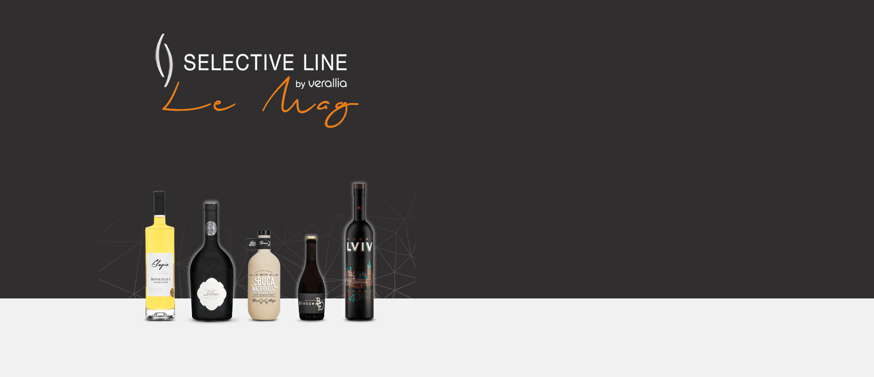 Newsletter of Selective Line with latest achievements